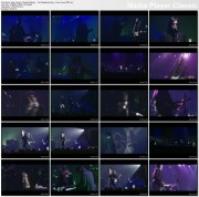 NICK CAVE & THE BAD SEEDS  - The Weeping Song - live in Lyon 2001 - 1 music video (DVD rip AC3)