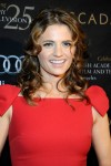Stana Katic - BAFTA LA Awards Season Tea Party 01/14/12