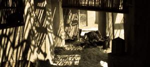 Bầy Sói Trong Bóng Tối b42a3e181391111